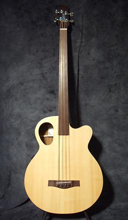 guitare basse electro acoustique occasion