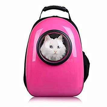 sac a dos pour chat amazon