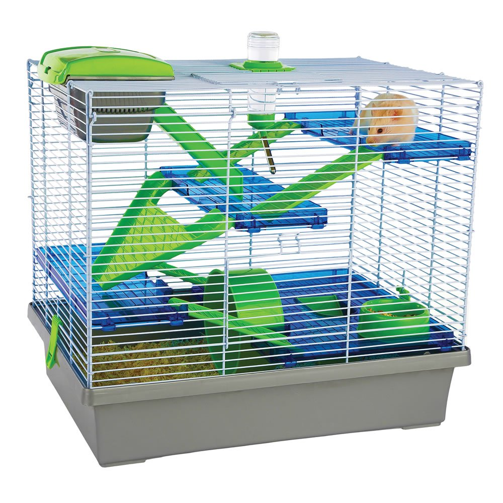 cage a hamster