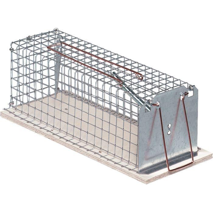 cage piege souris