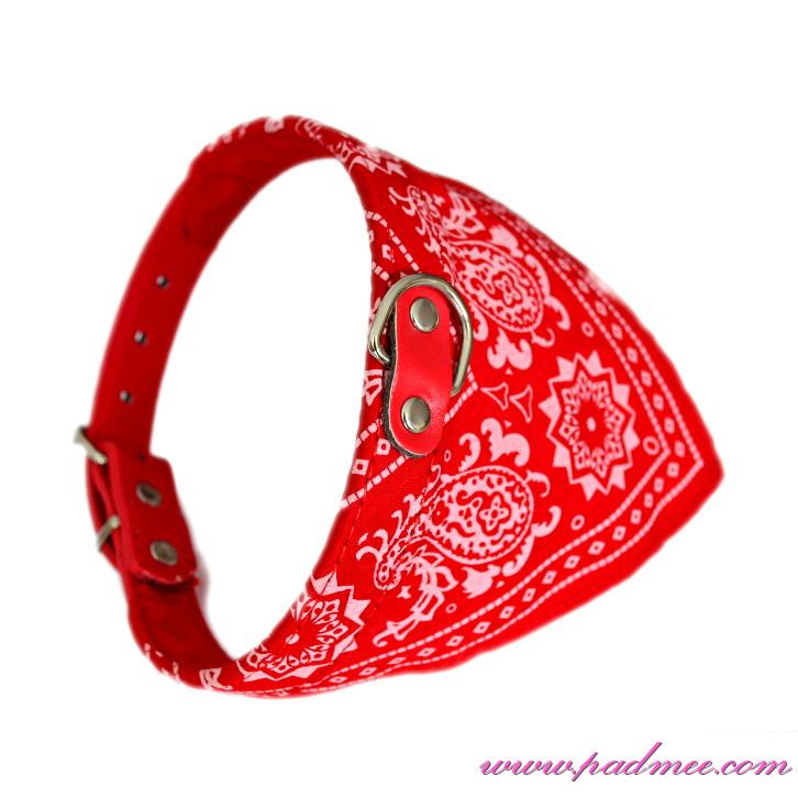 collier pour chien avec bandana