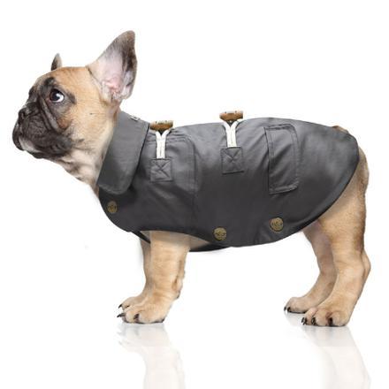 imperméable pour petit chien