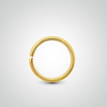 piercing anneau nez or