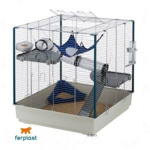 quelle cage pour un rat