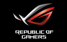republic of gamer